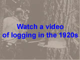 Logging in the 1920s