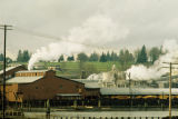Weyerhaeuser Mill C and Kraft Mill